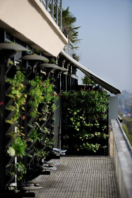 Le mur végétal du balcon terrasse du Septième apporte une note de fraîcheur à vos événements